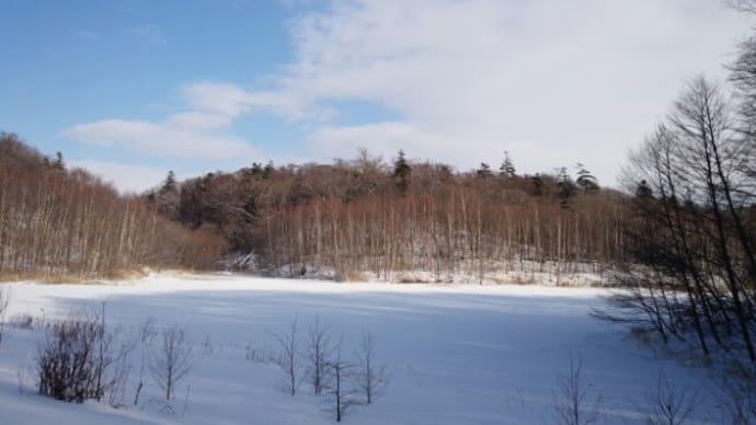 2016年初の瑞穂の池です♪