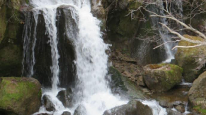 龍頭の滝を満喫!奥日光で自然を楽しもう!(その5)