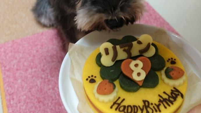リアンの8歳の誕生日のお祝いをしました♬