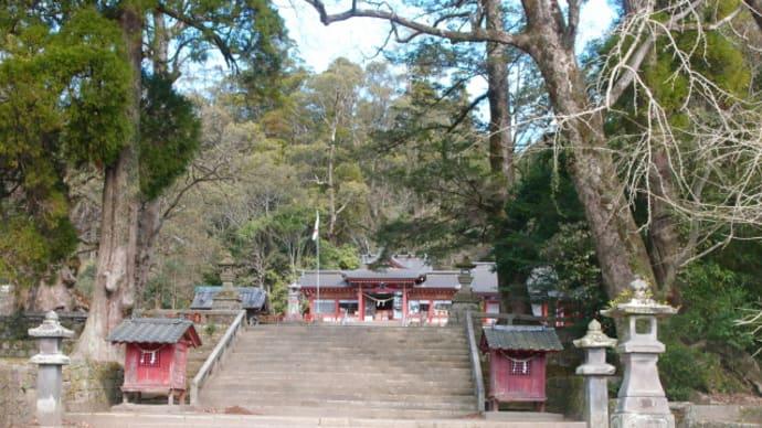 日本一の巨樹「蒲生のクス」を見て道の駅「いぶすき」に (2016/2/3)