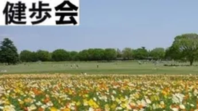 ◆健歩会[街歩・山歩](自動更新)