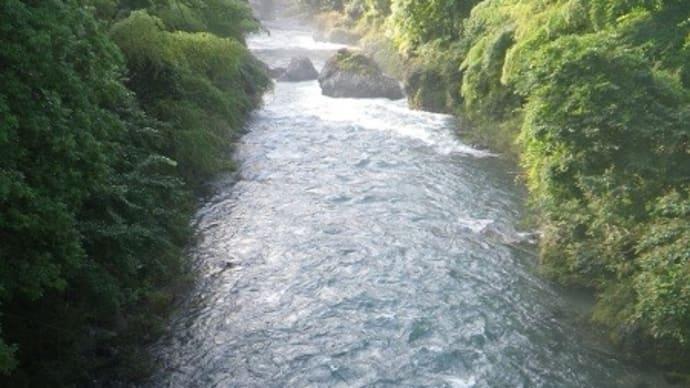 7月19日 高水の那比川で鮎釣り!