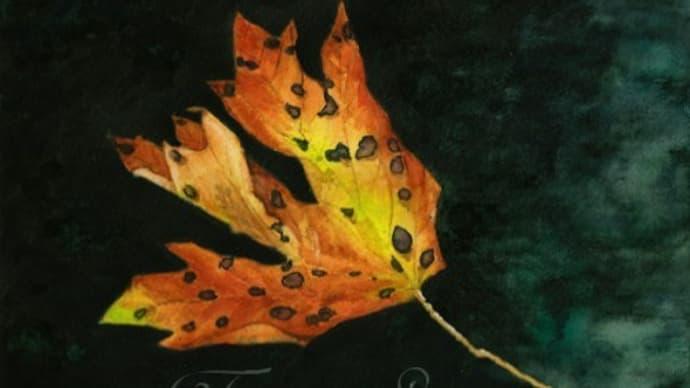 絵画販売・水彩・原画「落ち葉」