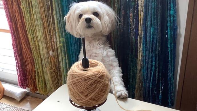 久しぶりの編物