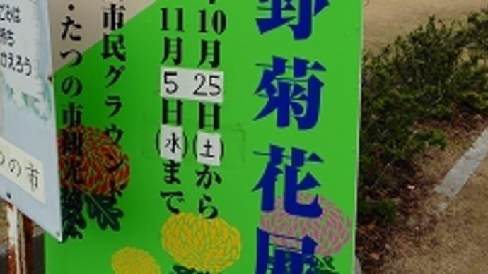 第57回 龍野菊花展