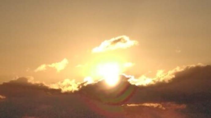 初日の出、カンツバキ 観音山