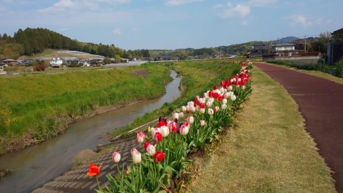 ハッシュタグ-3つの腹立ち   goo blog(gooブログ)