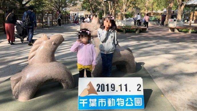 千葉市動物公園 2019/11/2