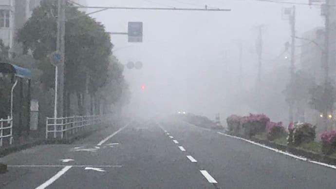 霧の中の出社