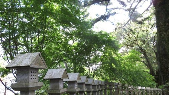 巨樹好き来たれ!樹齢500年カツラとの再会~岩間山正法寺(前編)