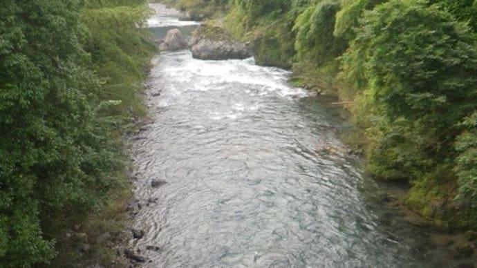 8月02日 亀尾島川と那比川で鮎釣り!