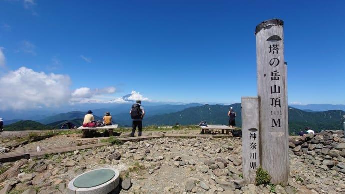 真夏の丹沢 塔ノ岳登山