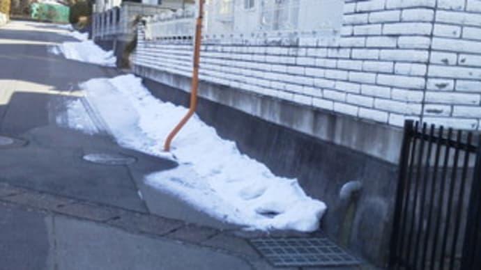 昨日、ユノが雪の中に