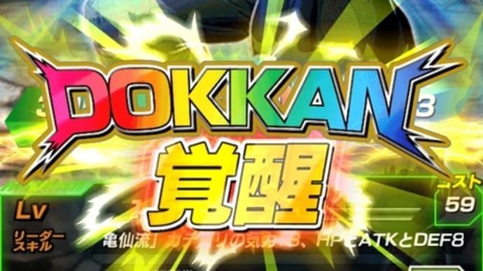 ドッカン覚醒!LR亀仙人!&パン(GT)(ハニー)