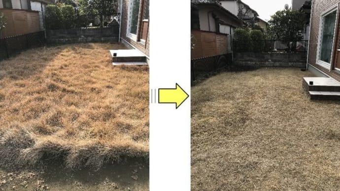 伸び放題となっていた芝生の芝刈り作業