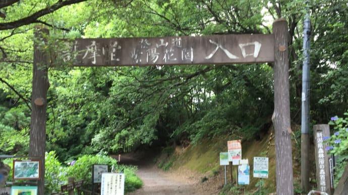 ウォーキング(ハイキング):田上町・護摩堂山