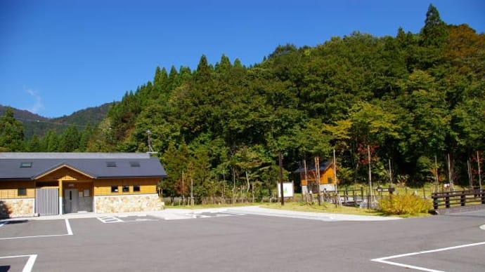 ブナの森、毛無山(1218m)