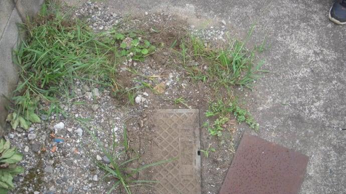 鉛の管からの水漏れ・・・千葉市