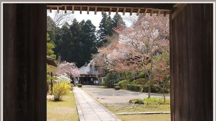 春の延命寺(2021.03 No.25)