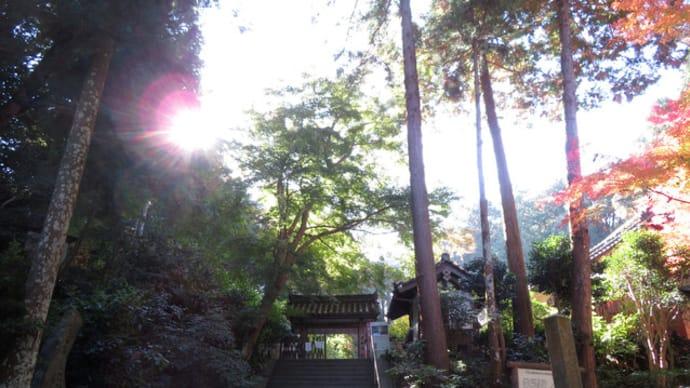 岩船寺、隅から隅まで~当尾散歩2020/11 (3)