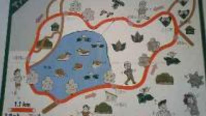 ウオーキング:五十公野公園