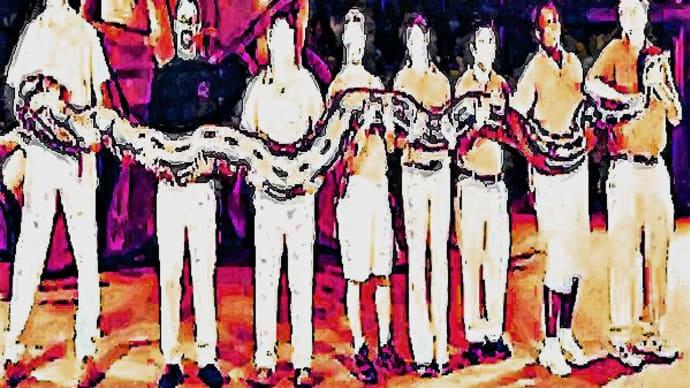 202105 世界最大の蛇網目錦蛇が脱走行方不明!襲撃危機に横浜市民驚愕