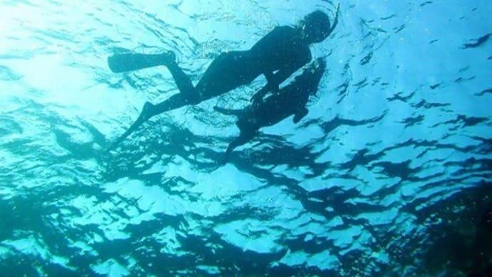 みんなといっしょに泳いでいるんじゃない。自分だけの海を泳いでるんだ