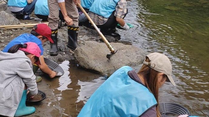 岩泉祭りで砂金採り体験