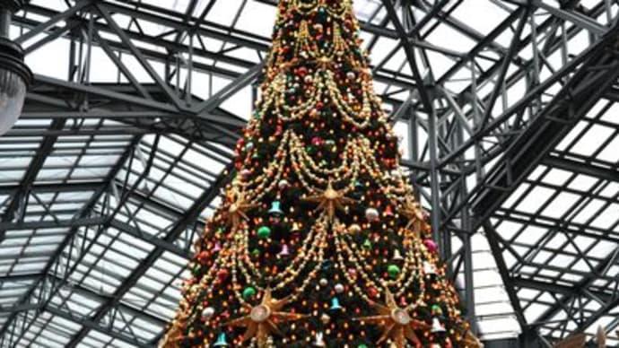 クリスマスツリー in TDR
