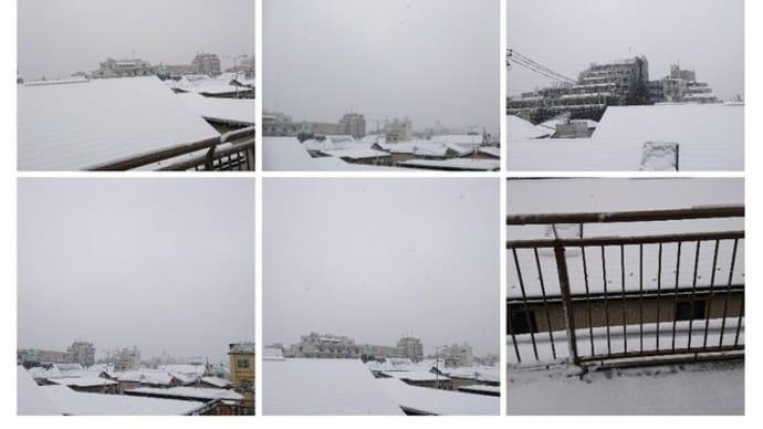 東京に雪が降る