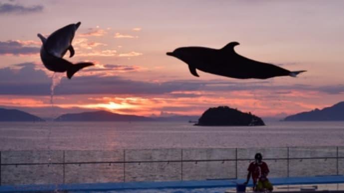 四国水族館(過去の写真から)