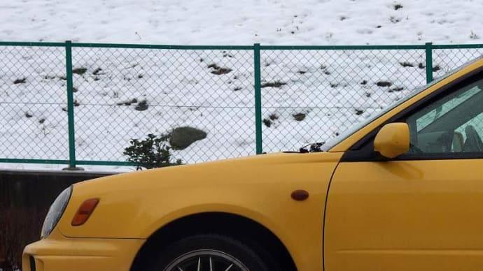 雪を追いかけて