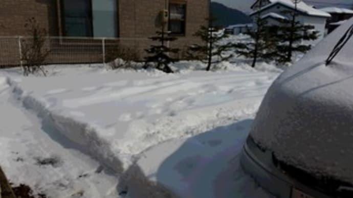 さりげなく大雪