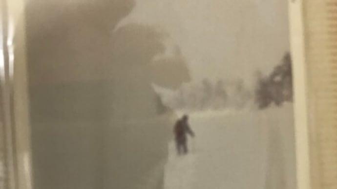 3月 雪の尾瀬ケ原 再掲 悪徳悪質芝信用金庫横領事件 課長が来社。