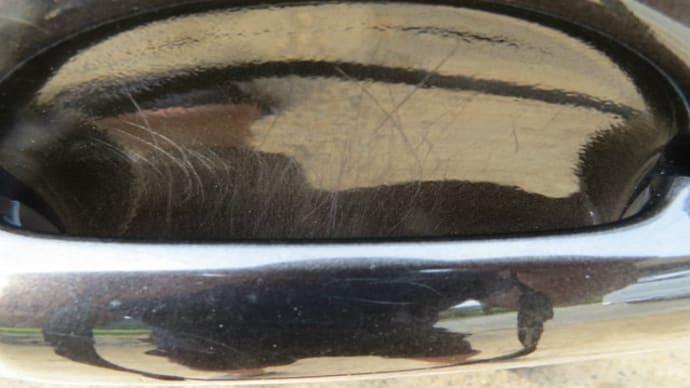 30系ヴェルファイア セルフリストアリングコートのドアハンドル回りのつめ傷への効果は?