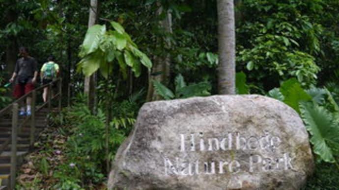 シンガポール・ブキ・ティマ自然保護区