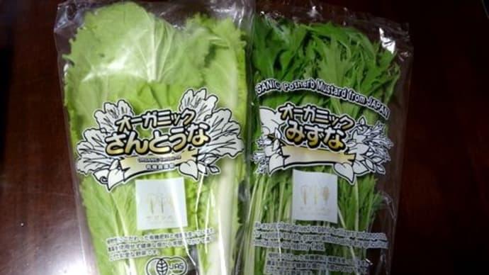 ネット注文の佐賀県産葉物野菜