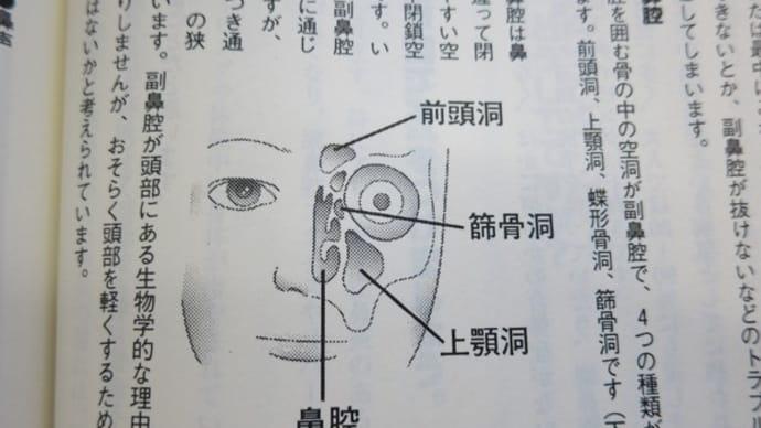 副鼻腔炎(蓄膿症)治療で飲み続けた薬と耳抜きについて