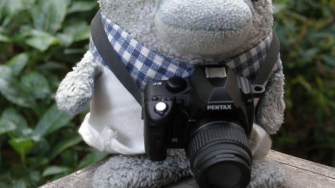 デジタル一眼レフカメラ買ってもらいました。