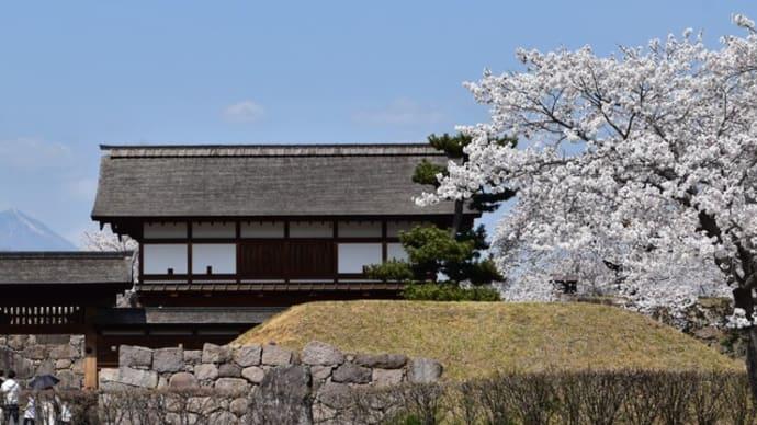 4月2日の桜巡り(No2):松代城跡の桜