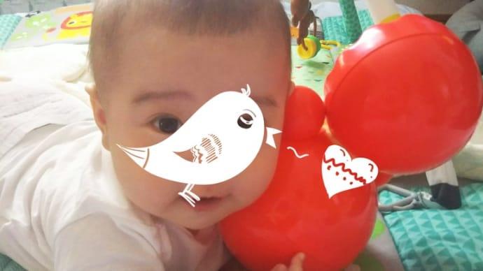 大人気の赤ちゃん用イベント