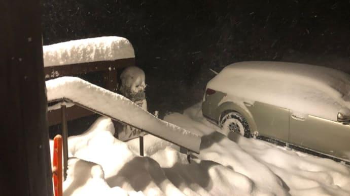 今夜は吹雪^_^久しぶりに・・・いいね!