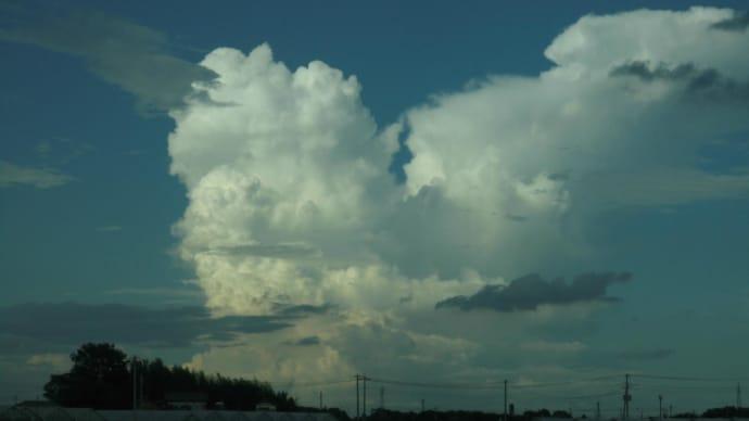 入道雲とこころのすみっこにおきたい本。