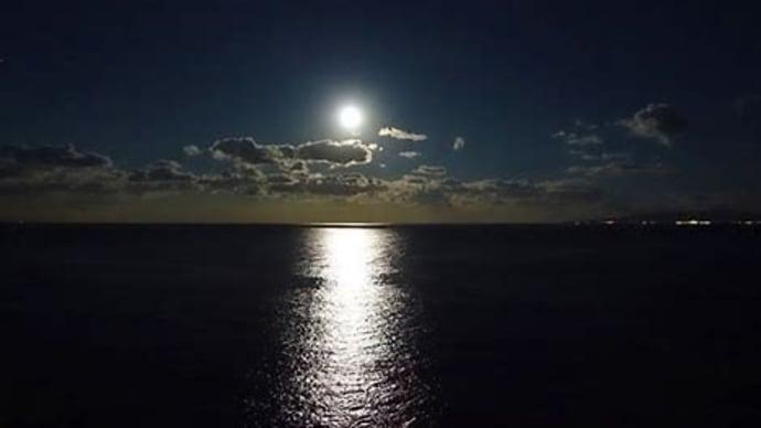 堕ちてゆく橋を渡れば月の海小林実