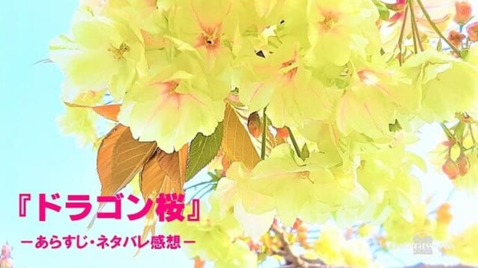 1年待った『ドラゴン桜2』全話ネタバレ感想まとめ!阿部寛コロナ禍受験ドラマ