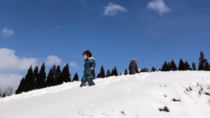 2021年2月25日㈭森の木の子『冬と春の境目は盛りだくさん』