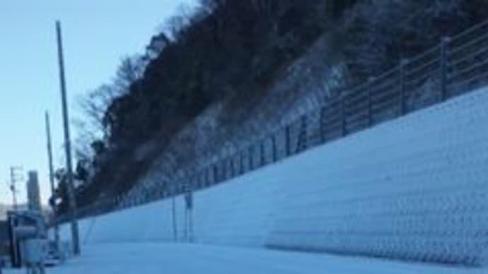今朝は姫路でも積雪