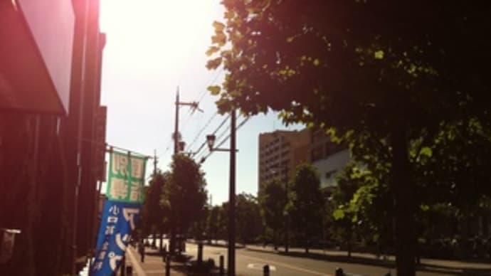 夏のナイトライド開催!!