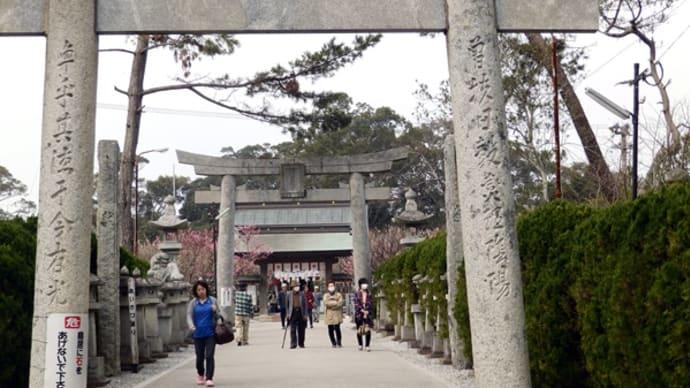 綱敷神社の梅祭り