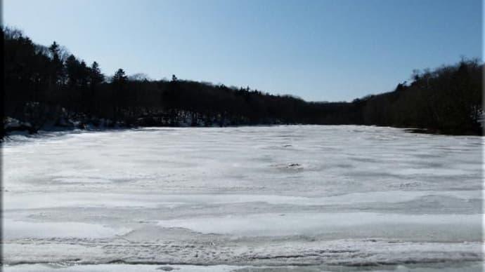 池や公園の雪どけは・・・